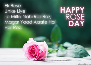 whatsapp rose day images