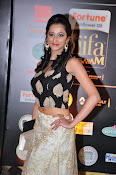 Actress Radhika at IIFA Utsavam day 2-thumbnail-18