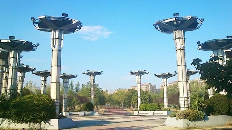 proyecto parque las comunidades alcorcon madrid plaza