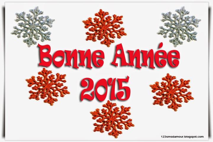 Idée message Bonne Année 2015