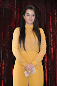 Trisha photos at Cheekati Rajyam event-thumbnail-5