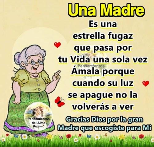 Una Madre es una estrella fugaz que pasa por tu Vida una sola vez, Amala porque cuando su luz se apague no la volverás a ver.