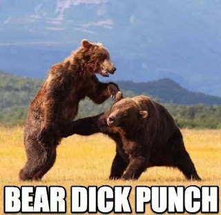 have you ever been dick punch bear funny photo image epic awesome random
