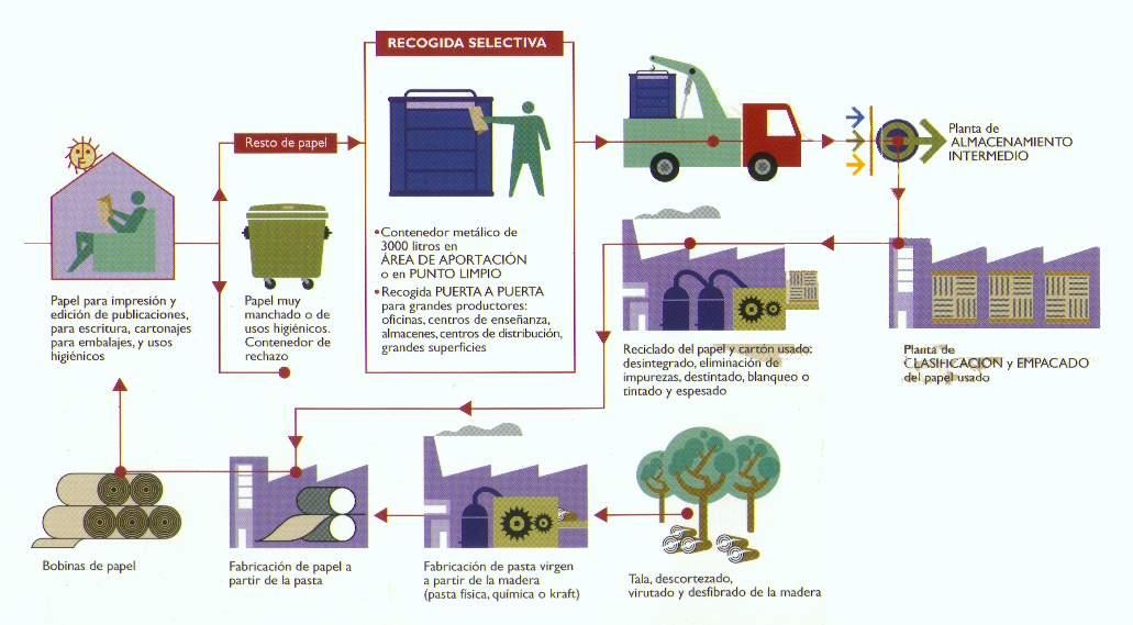 Megaoffice esa herramienta tan importante el papel - Reciclaje de la madera ...