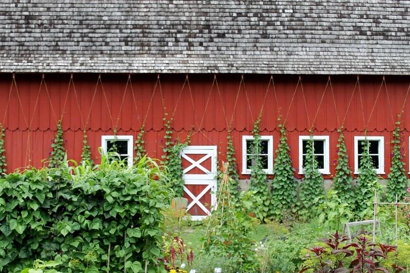 Gardens at Seed Savers, Decorah, Iowa