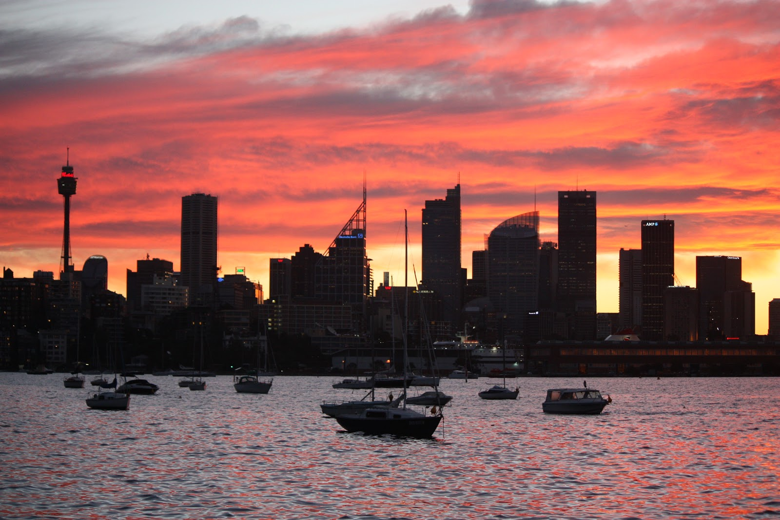 #C57C06 Sydney City And Suburbs: Rushcutters Bay Sydney Skyline Most Effective 9415 Aircon Regas Eastern Suburbs Sydney pictures with 1600x1067 px on helpvideos.info - Air Conditioners, Air Coolers and more