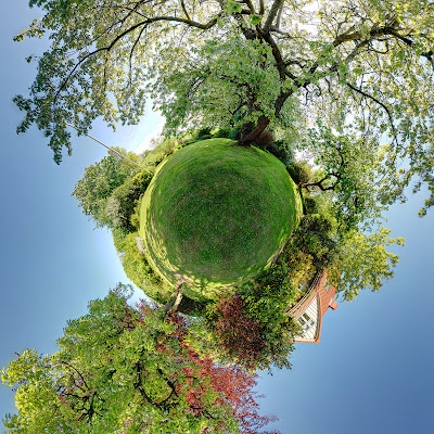 panoramic photograph of garden 360 view
