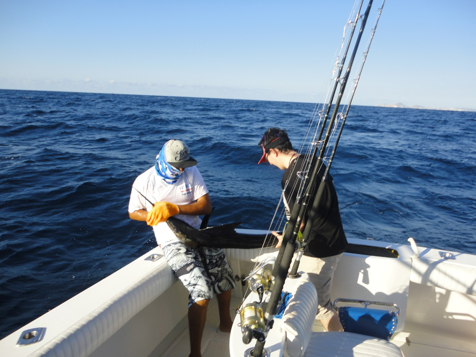 fishing in cabo san lucas ksouth 39 s blog