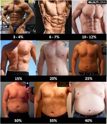 体脂肪率ごとの男性のカラダ画像(3-4%; 6-7%; 10-12%; 15%; 20%; 25%; 30%; 35%; 40%)