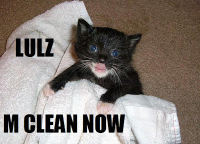 March 2012 | Funny Cat Pictures Funny Cat Videos Clean