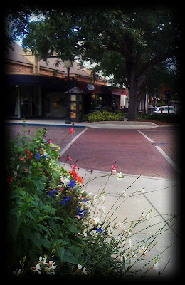 Park Avenue in Winter Park Florida