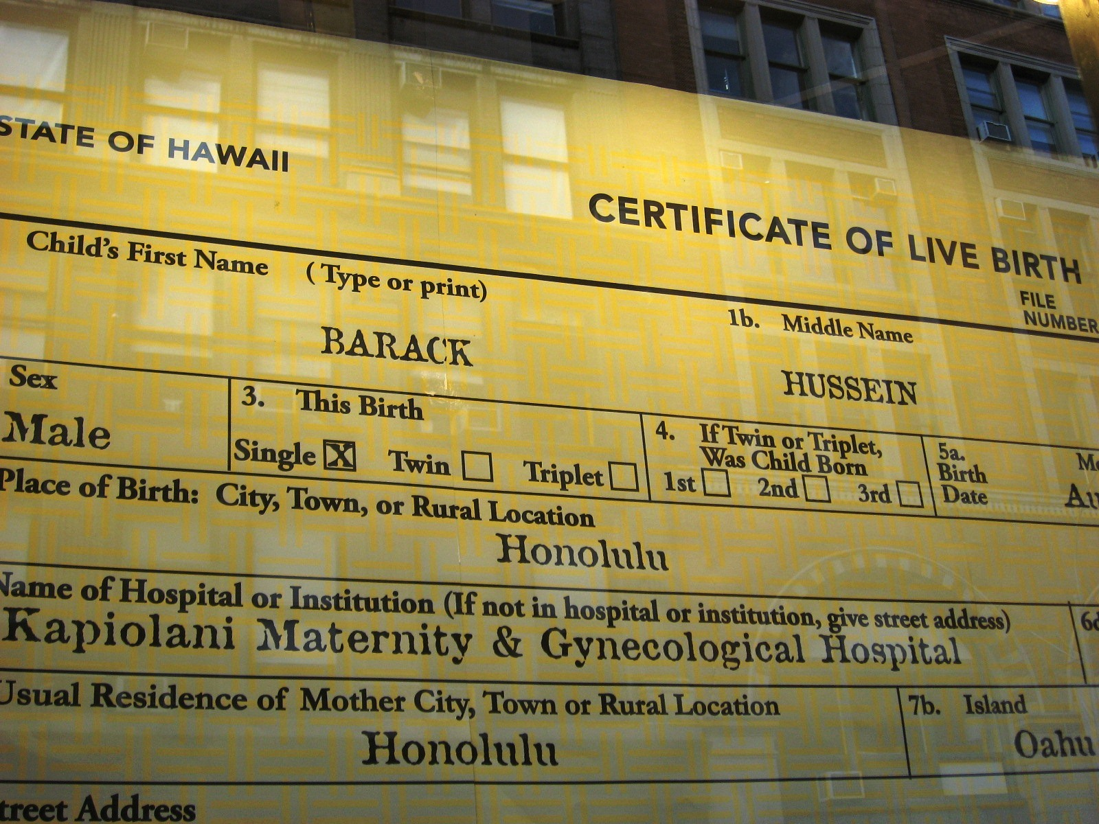 Urban infidel barack hussein obama birther certificate ceramic i love the window display so cynical and yet so wonderful aiddatafo Image collections