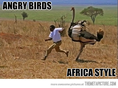 Title 'em Funny-angry-birds-Africa