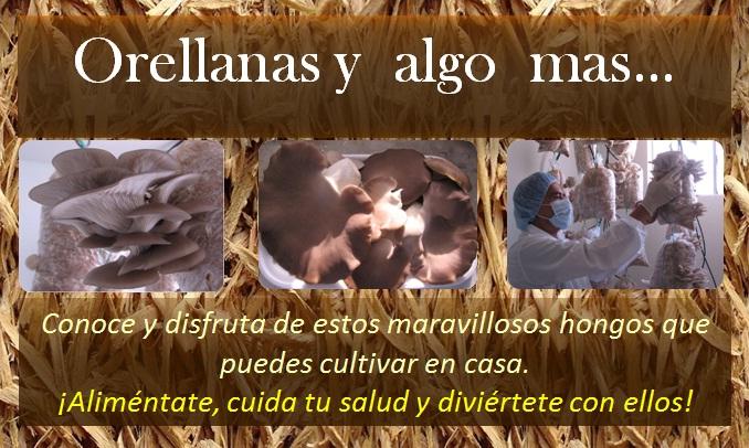 ORELLANAS Y ALGO MAS.....