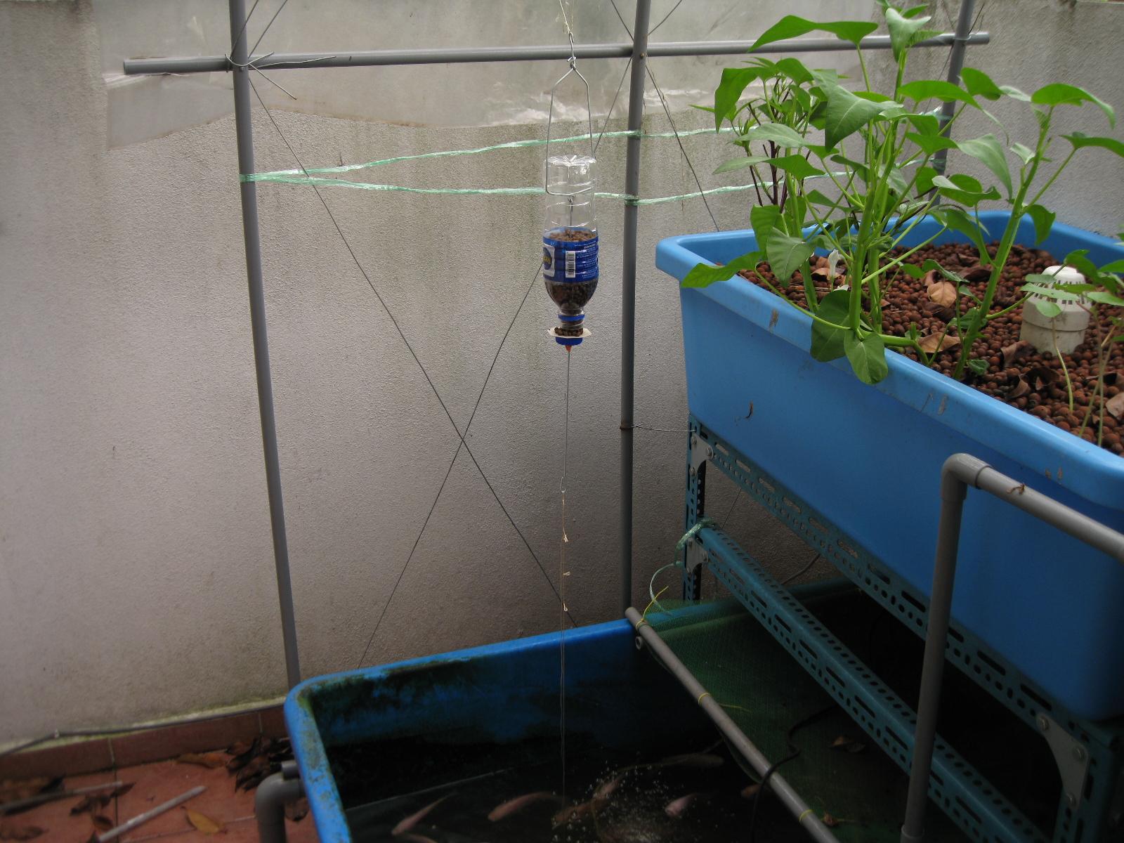 easy diy aquaponics pdf the new ebb and flow hydroponic project