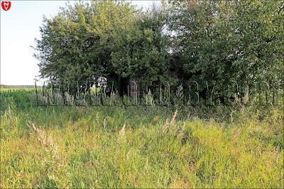 Первый бункер у деревни Ольховцы