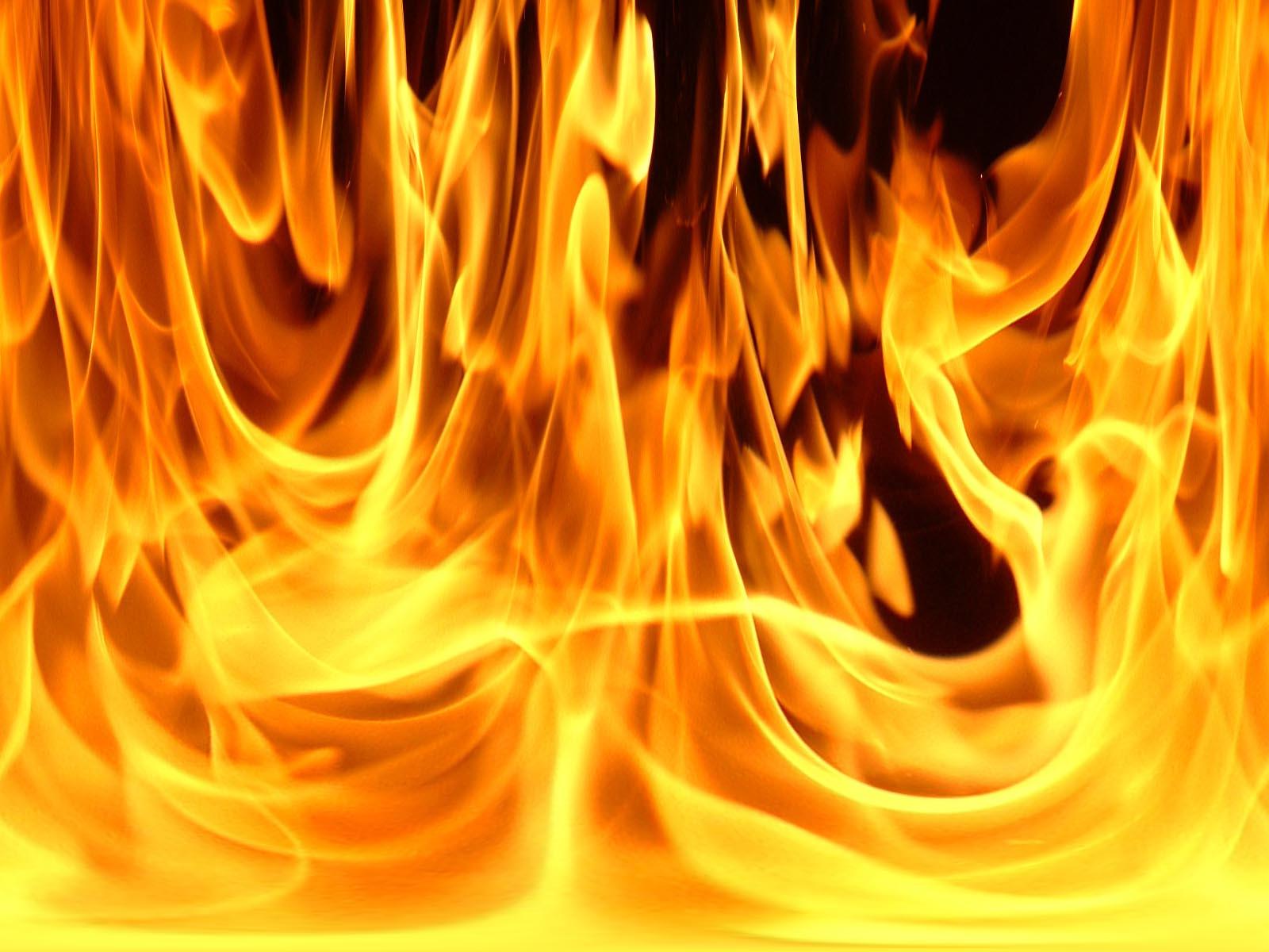 http://1.bp.blogspot.com/-IO9CgFRnDOs/ThCUWsNMQXI/AAAAAAAAAJY/d0iCMAj7lYU/s1600/foc.jpg