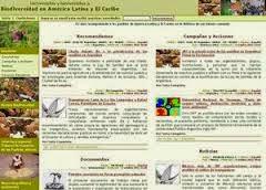 ARTICULO DE DEL ROSARIO IGNACIO DENIS