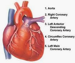 perawatan penderita penyakit jantung