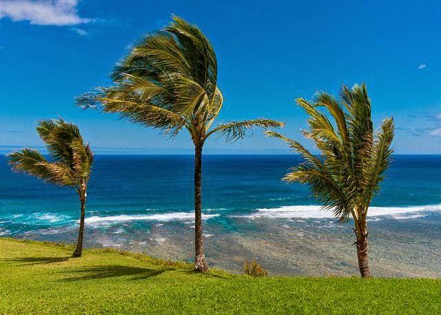 Pinceville Hawaii Vacation Rental Home