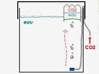 Pourquoi ajouter du CO2 ? Cloche+CO2