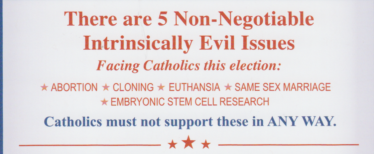 five non negotiables the catholic churchs teaching on abortion euthanasia embryonic stem cell research human cloning and same sex marriage