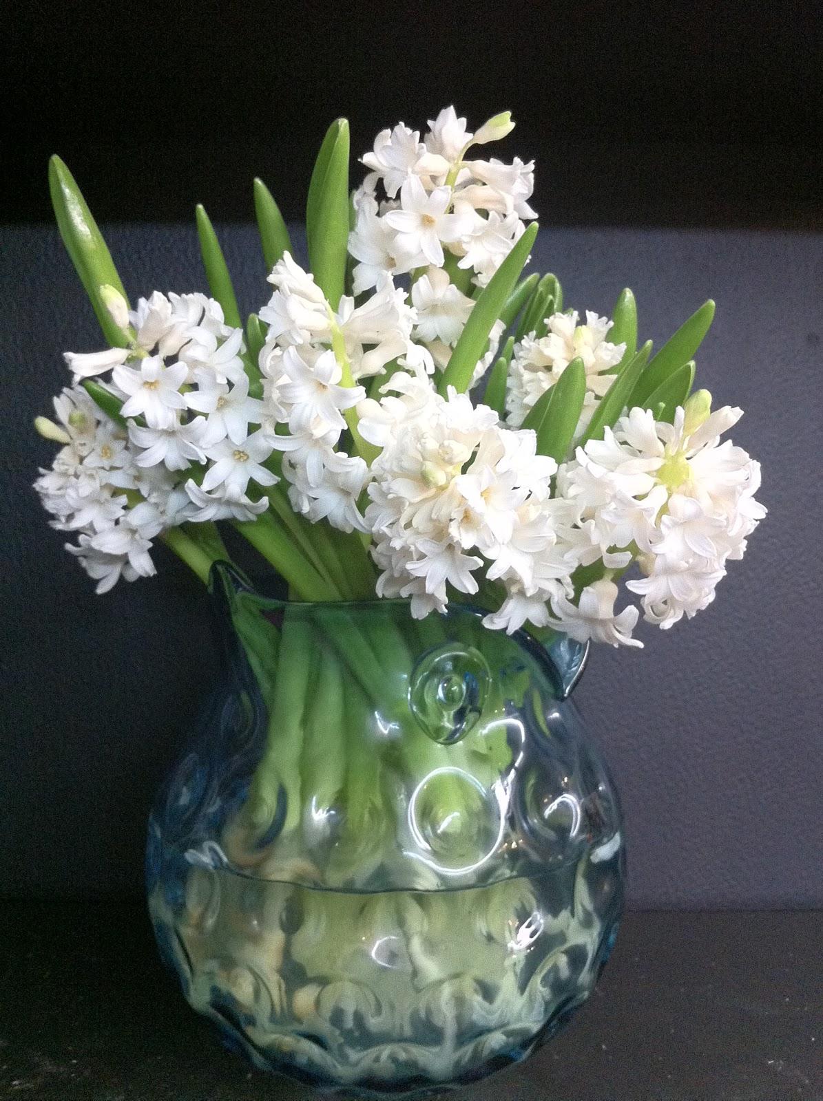 The enchanted petal hyacinth day dhlflorist Choice Image