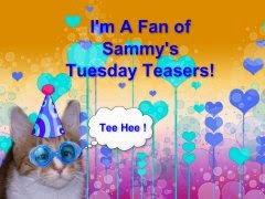 We're fans of Sammy's Teasers