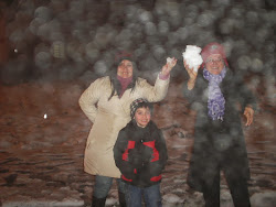Neve   em   São  .joaquim   SC