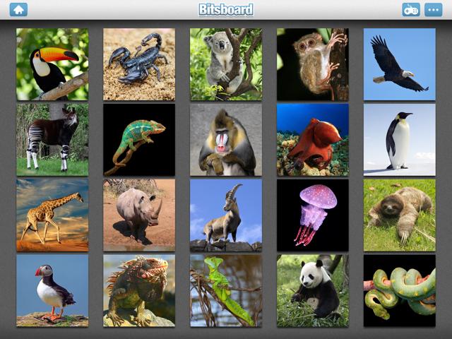 Screenshot Bitsboard Explore