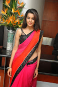 Deeksha panth sizzling saree stills-thumbnail-11