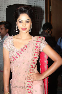 Actress Bindu Madhavi Saree Picture Stills 004.jpg