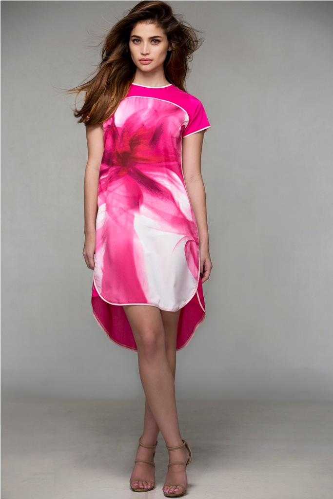 Anne curtis dress