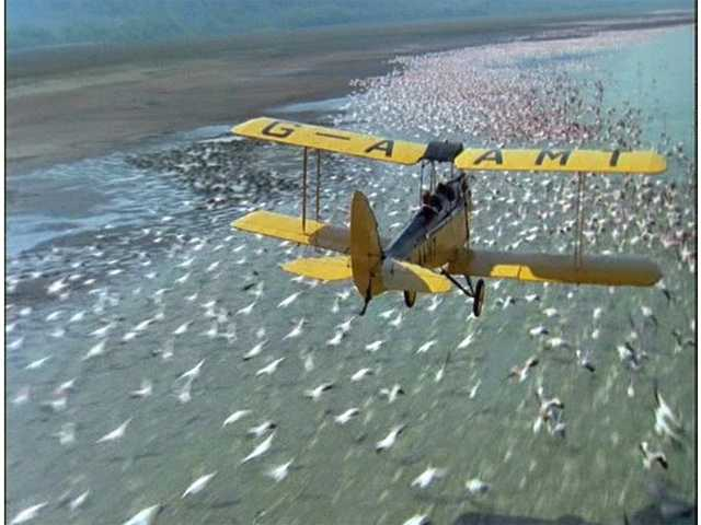 outafricaplane.jpg