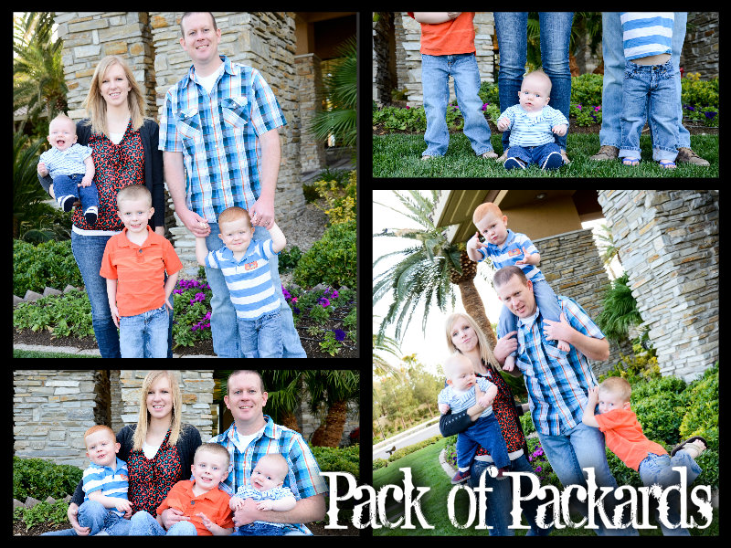 Pack of Packards