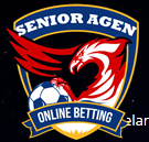 logo senior agen
