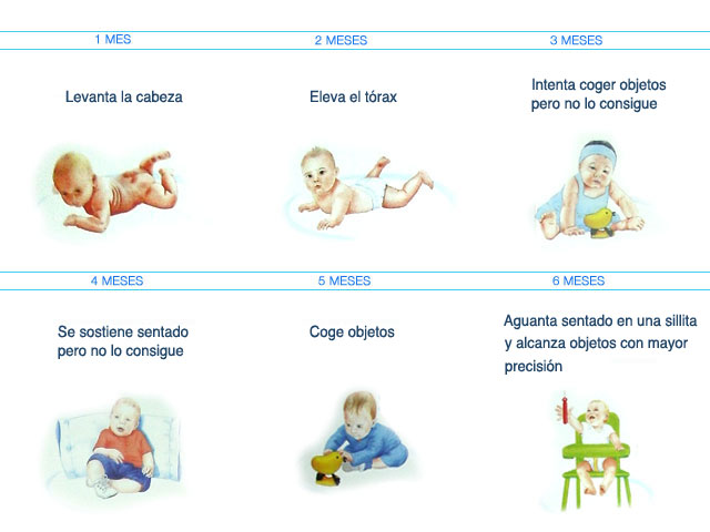 Neurodesarrollo terap utico ni os de 0 a 6 meses - Desarrollo bebe 6 meses ...