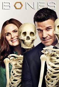 Bones Temporada 5 Online