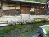 「醒ヶ井宿資料館」前が花が一番近く撮れる場所