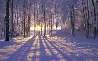 Peisaj de iarna frumos