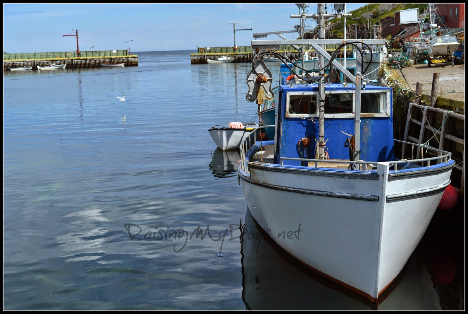 fishing boat in Petty Harbour, NL