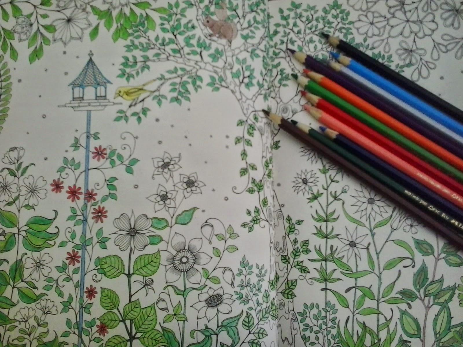 ideias para pintar livro jardim secretoCom a quantidade de desenhos