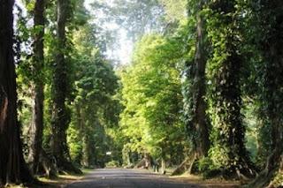 Sehari menjelajahi wisata dalam Kota Bogor