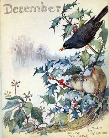 December by Edith Holden