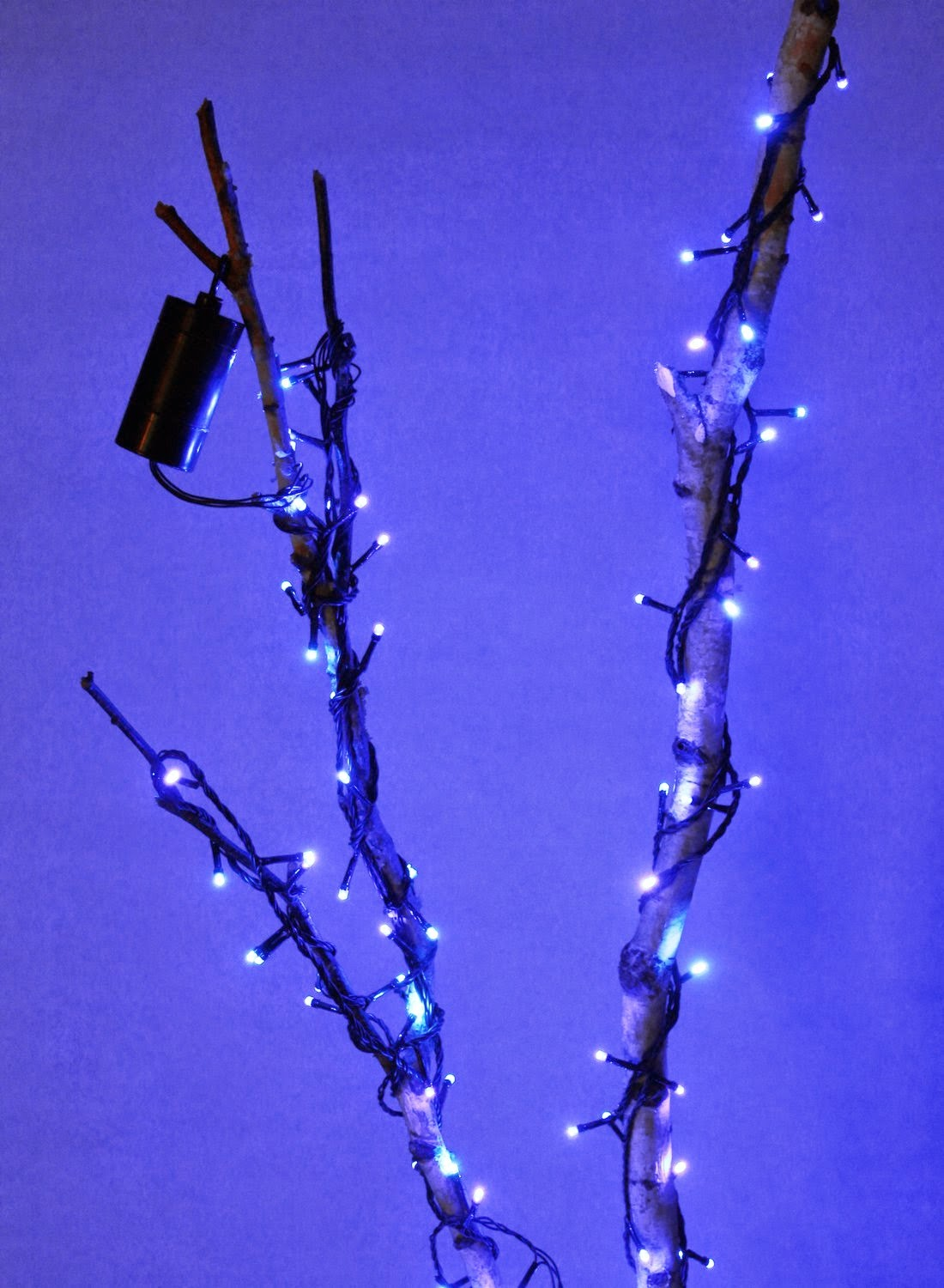 String Lights Used : Lightshare: Inspiration for Christmas String Lights Used in Other Occasions