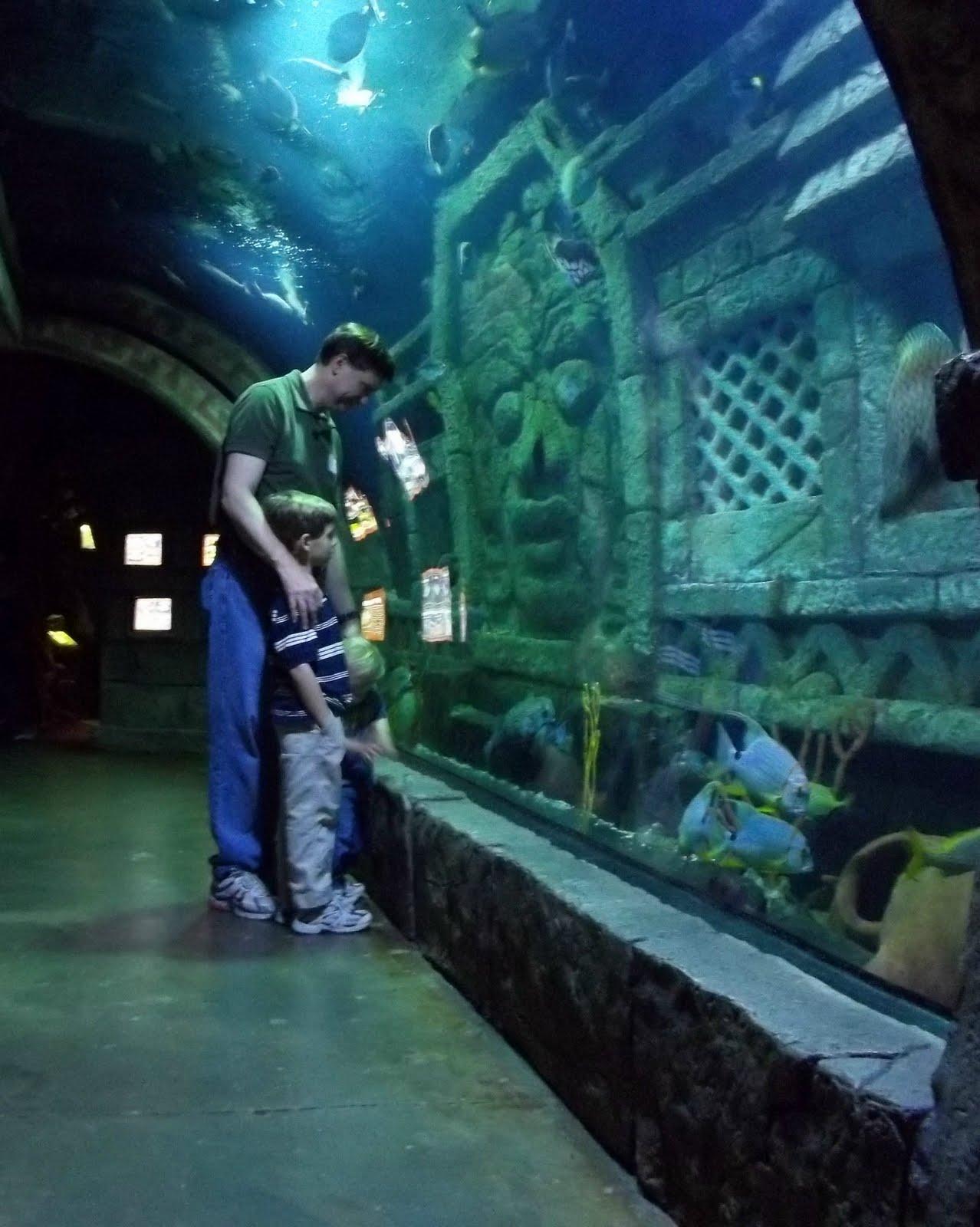 The Garner Family Houston Downtown Aquarium