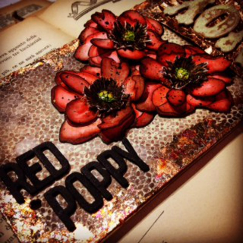 Rosso Papavero