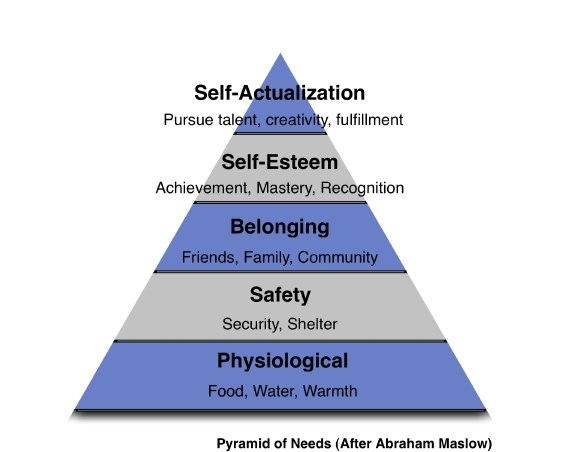 maslow theory of motivation Maslow's hierarchy of needs (often represented as a pyramid with five levels of needs) is a motivational theory in psychology that argues that while people aim to meet basic needs, they seek to meet successively higher needs in the form of a pyramid.