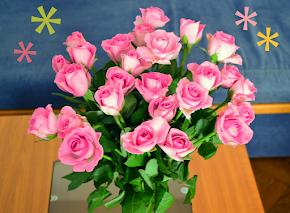 Všetkým vám želám krásny deň...