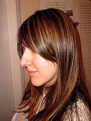 Hair highlights to do at home 100 images beauty101lisa diy at hair highlights to do at home hair colour at home highlights best hairstyles 2017 pmusecretfo Image collections